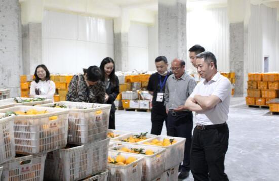 重庆长安民生物流考察团莅临渝西国际